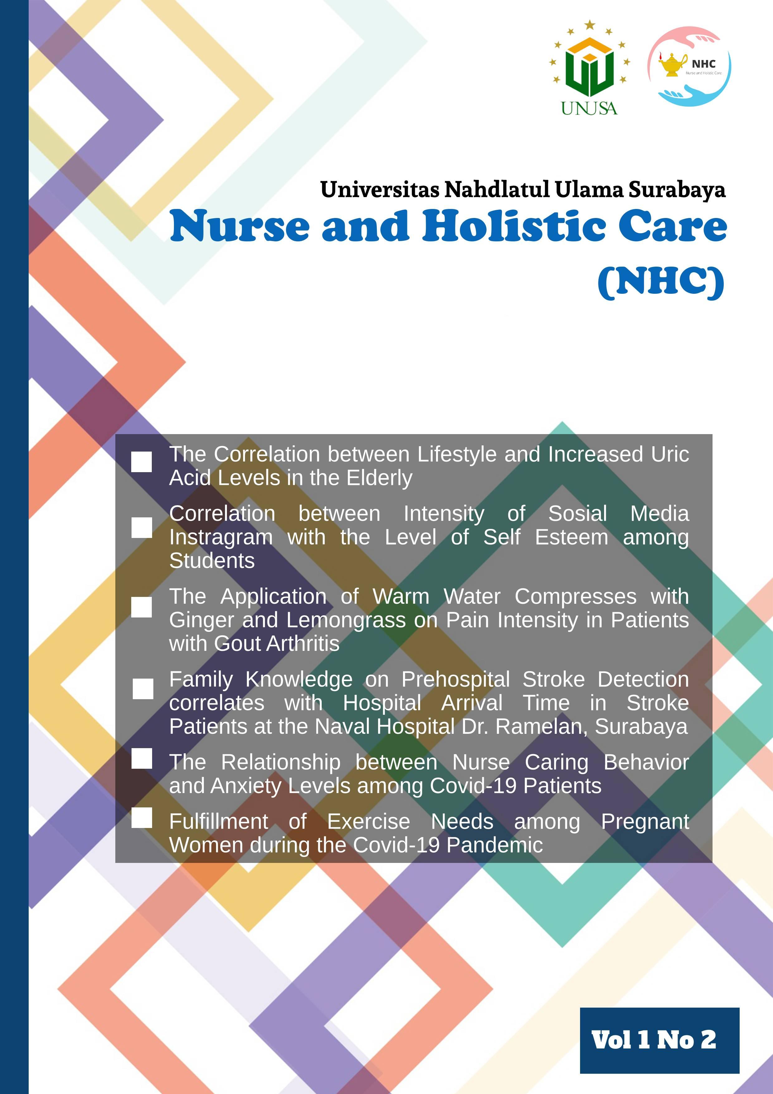 View Vol. 1 No. 2 (2021): Nurse and Holistic Care